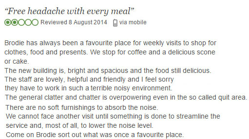 Online review demonstrating how a poor noise environment can ruin a dining experience