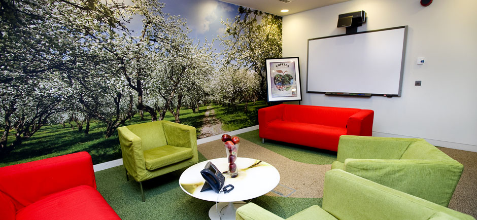 acoustic artwork panel in visual conferencing room