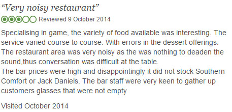 Negative online review of restaurant noise
