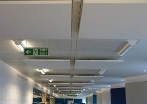 Sound absorbing panels in a call centre