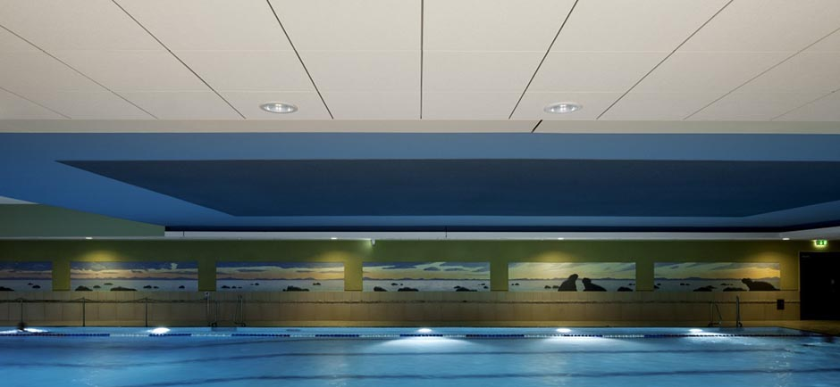 acoustic ceiling in swimming pool