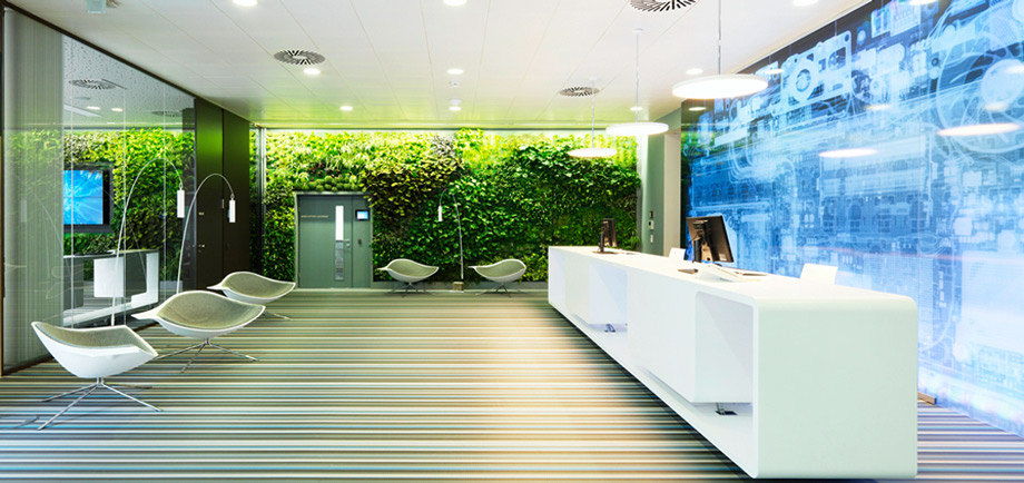 green wall in modern office