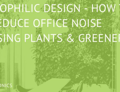 Biophilic Design – The New Way To Reduce Office Noise?