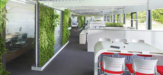 Biophilic design the new solution to office noise for Office plants no natural light