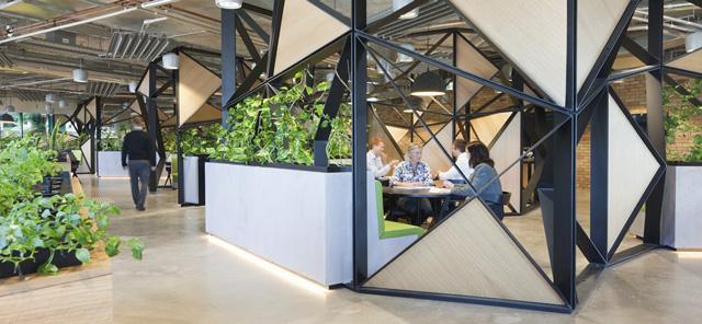 woods bagot office